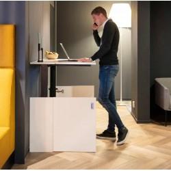 Thuiswerkplek - Home fit
